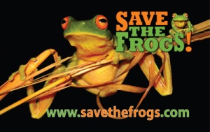 Save The Frogs Use Soapnuts!