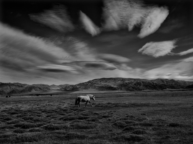 White Horse. by Palani Mohan The Kazakhs living in Mongolia have a long history of riding horses. The nomadic tribes living in pre-historic Kazakhstan were said to be the first to domesticate and ride horses. Today, the tradition is still very much alive deep in the remote region of the Altai Tayan Bogd national park, which borders Russia, Kazakhstan, Mongolia and China.